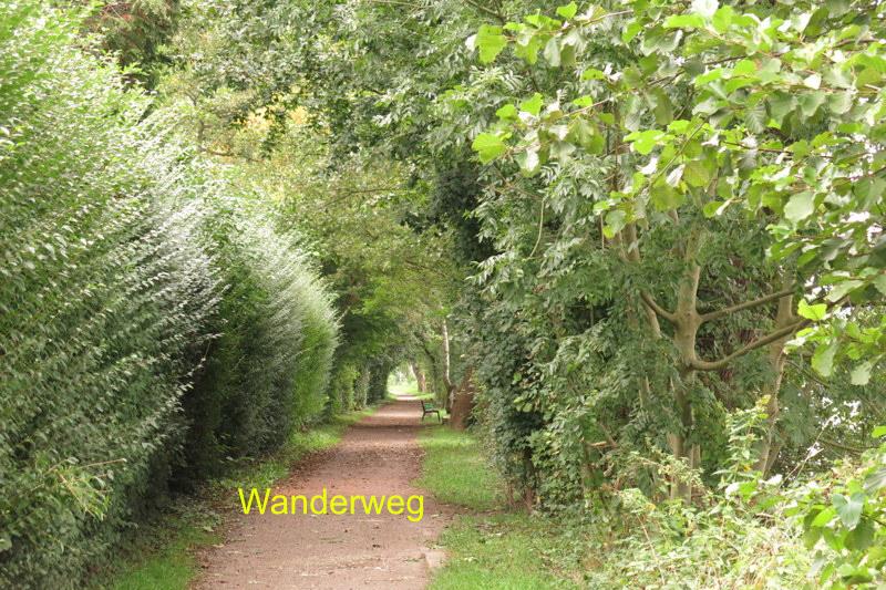 11 Wanderweg